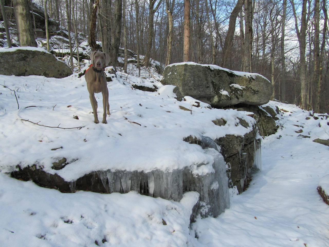 This was another trail with interesting rock formations that might be pretty in the spring when not snow covered.
