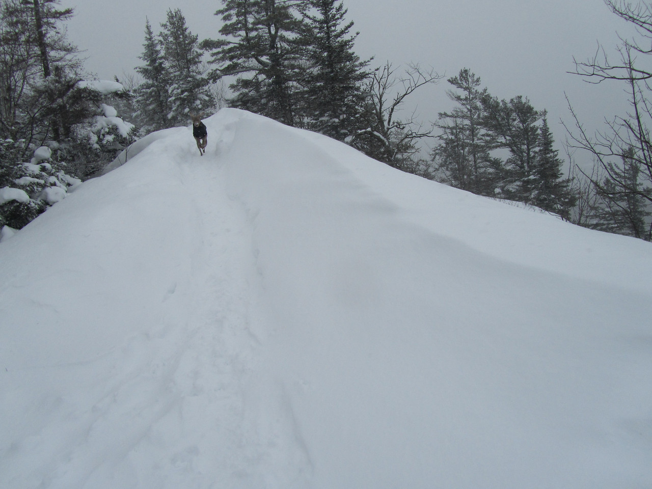 Look at that snow drift! Over 4 feet high.