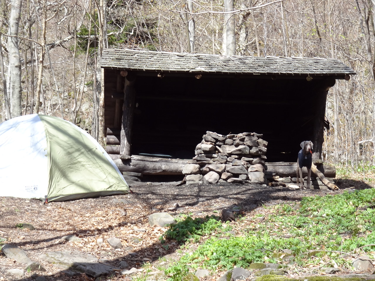 "This was our home for the evening. Grandpa, son and granddaughter shared the lean-to with Gunter and I, with the married couple in the tent. You are allowed to build camp fires in the Catskills but the wind was so high in the evening, I was afraid I would start the woods on fire: Like my two next-door neighbors, Tim O'Hara and Andy Moynahan, did in my home town of Vestal, NY when we were kids. <br /> And not to toot my own horn but Andy's little sister Kathryn had a crush on me. Kathryn went on to use her middle name Bridgett when she began acting. That's right Tom Brady & McG, she liked me first. Oh, she probably still Googles me now and then, to see what I am doing. Sorry Kathryn but this guy in a Country Guy, no big city lights for me. Hollywood just won't work. We are like two ships passing in the night. Move on, my dear. We will always have that special summer in 1980: me, Tim and Andy in Cub Scouts, you had just lost your two front teeth and couldn't whistle. All you could do was yell ""hubba hubba"" when I walked by with my kneehigh tubes socks with stripes matching my wristbands ."