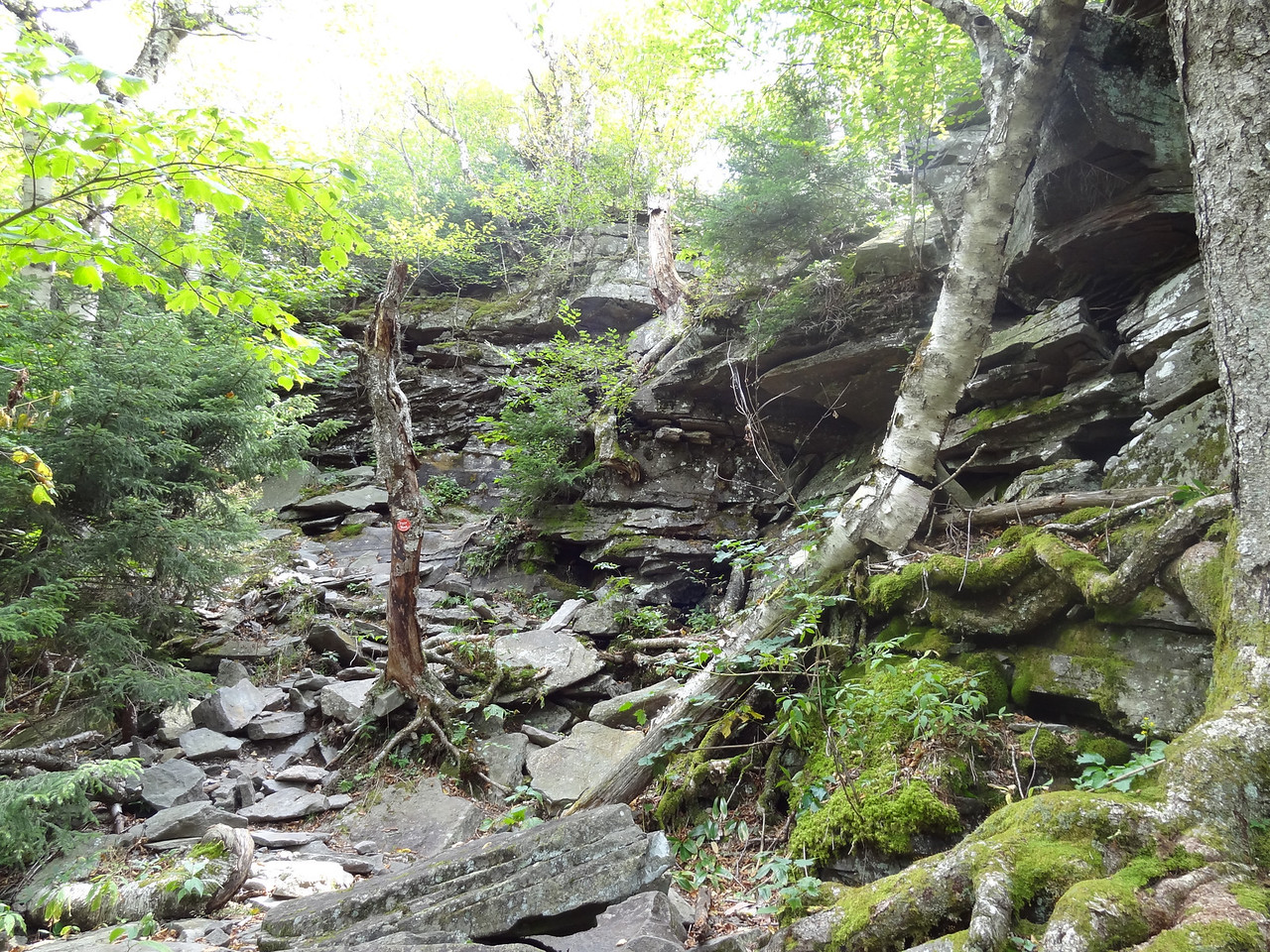 Again, another steep section.
