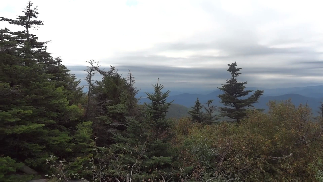At the summit of Twin Mountain in the Catskills. Would make a beautiful spot for a picnic lunch in nice weather.