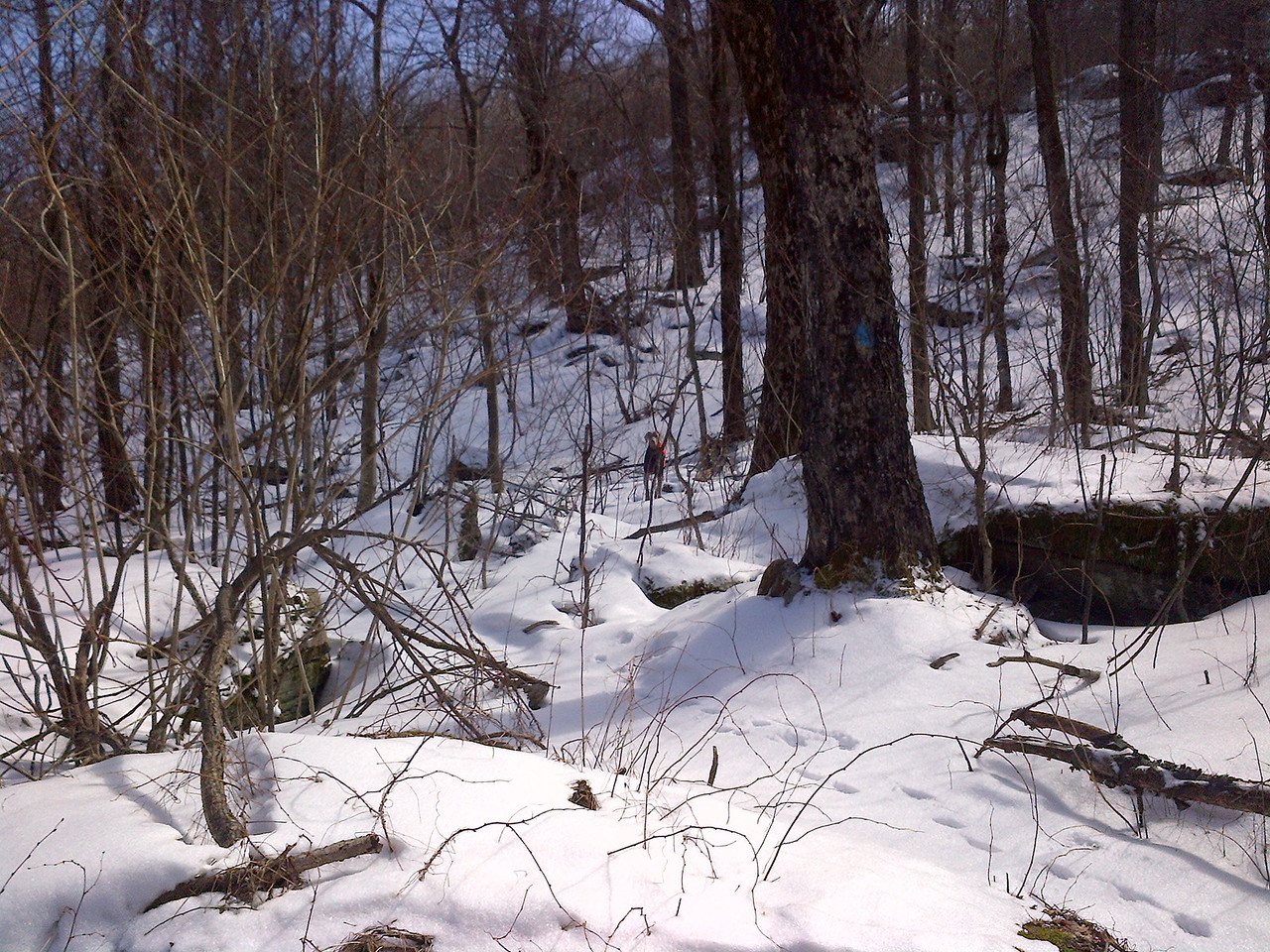 There were a few markings on the trees which really helped out because we were the only hikers in a week and the trail was not visable. Normally this would not be a concern but the snow was thick and you would posthole through the 2 feet of snow if you were not on the packed trail