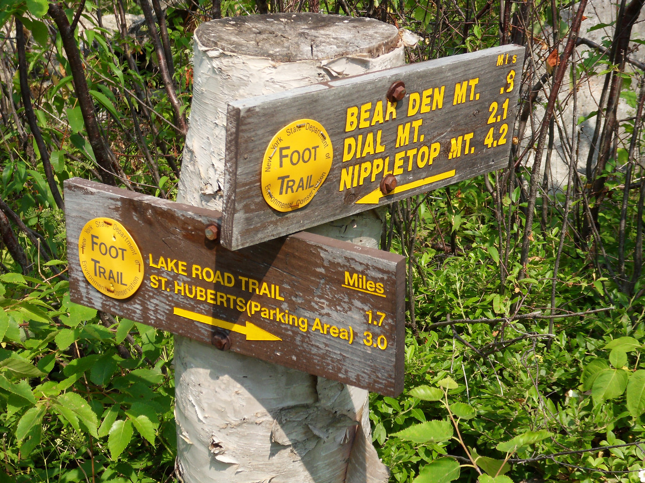 Just when you think you are about to summit a  peak, you stumble across one of these signs telling you that you are indeed, not even close. Give up and go home newbie.