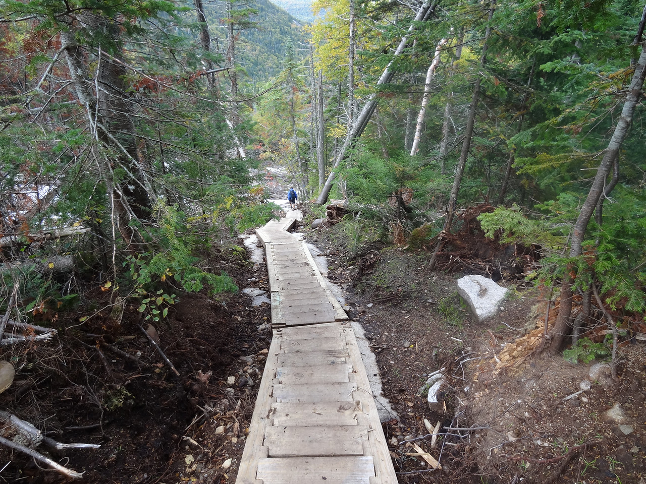 This 218 step staircase was installed because of the hurricane mudslide.