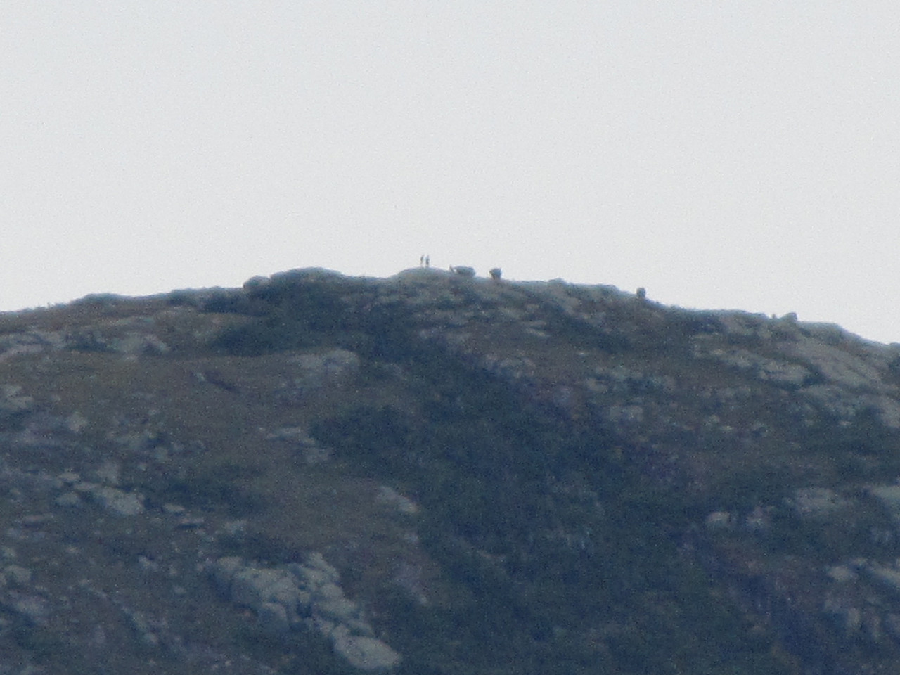 Zooming in to 20X, you see the actual people and what looks to be a flying saucer.