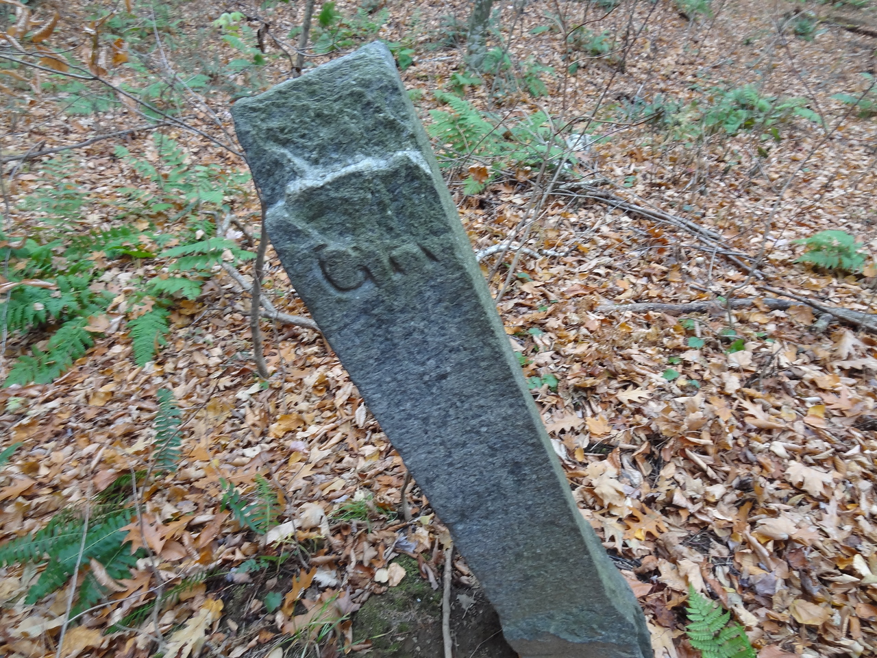 "Not sure what this stone marker is but can only guess it is an early property marker for ""GR"" Greylock? Found halfway up the lower flats to the right, partway towards the ravine."