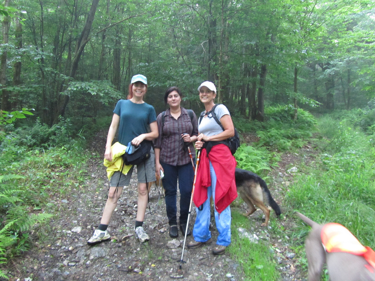 Prior to the descent through Berlin Pass, the rain stopped and we were teased with the thought that we might stay dry and have some views. Sadly no.<br /> <br /> I don't know where Jill was hiking with those wet pants, but the rest of us were dry at this point. The dogs were having a marking contest, which might explain it. Look at how guilty the dogs look! All three hiding their faces. Jill, you better wash those scrubs pronto!