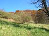 Fall views near Linden, VA