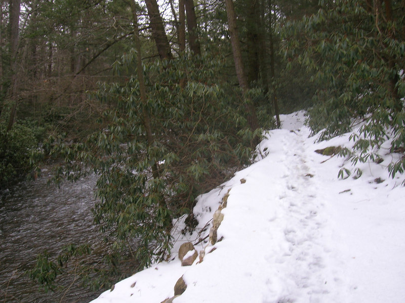 Walking along the slippery ledge next to the Conococheague Creek in the Caledonia State Park