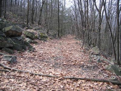 Trail through St. Anthony's Wilderness