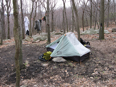 One of the few level and rock-free campsites around the Outerbridge Shelter.