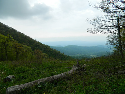 View from Little Hogback Overlook on Skyline Drive.