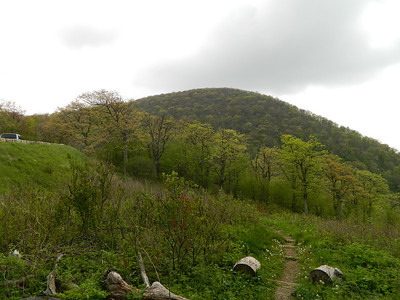 OK... now that I'm done, I have to climb Little Hogback and get back to the Elkwallow Wayside.