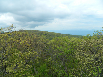 A hazy view just before the peak of Hogback Mountain.