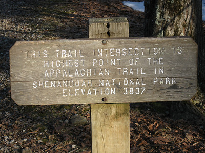 At the junction of the Stony Man Mountain summit trail.