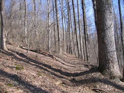 Snow was gone: Nice rock free trails