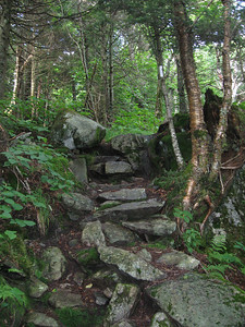 Short & Steep climb