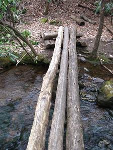 Three-log bridge just below the War Spur Shelter.