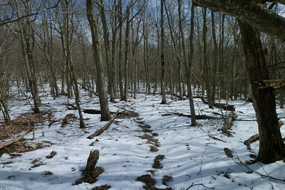 One week before spring makes it a winter hike.