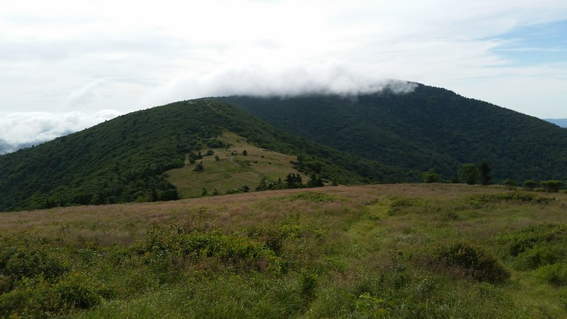 Looking north towards Jane Bald and Grassy Ridge (hidden by clouds)