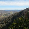 Last view before the ascent of Roan Mountain
