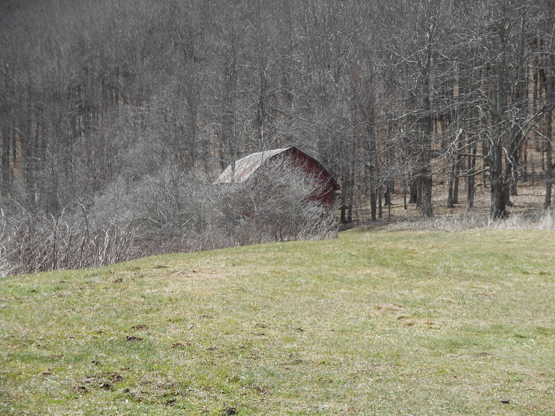 Overmountain Shelter - an old tobacco drying barn