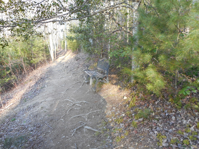 Memorial bench near Vango Solar Hostel