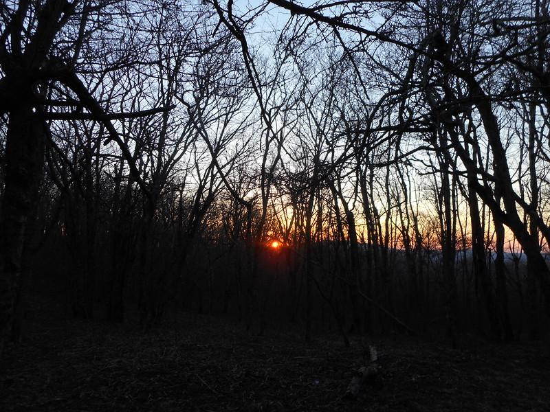 Thursday morning sunrise from the woods near Bradley Gap