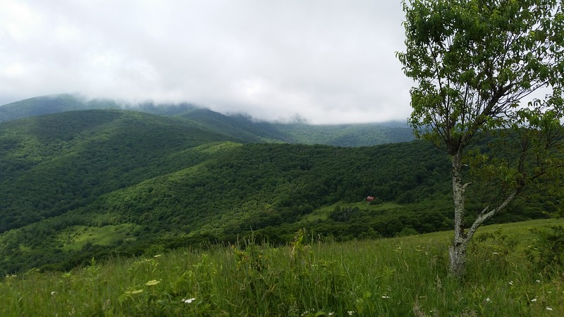 Looking back on the Overmountain shelter during the ascent of Little Hump