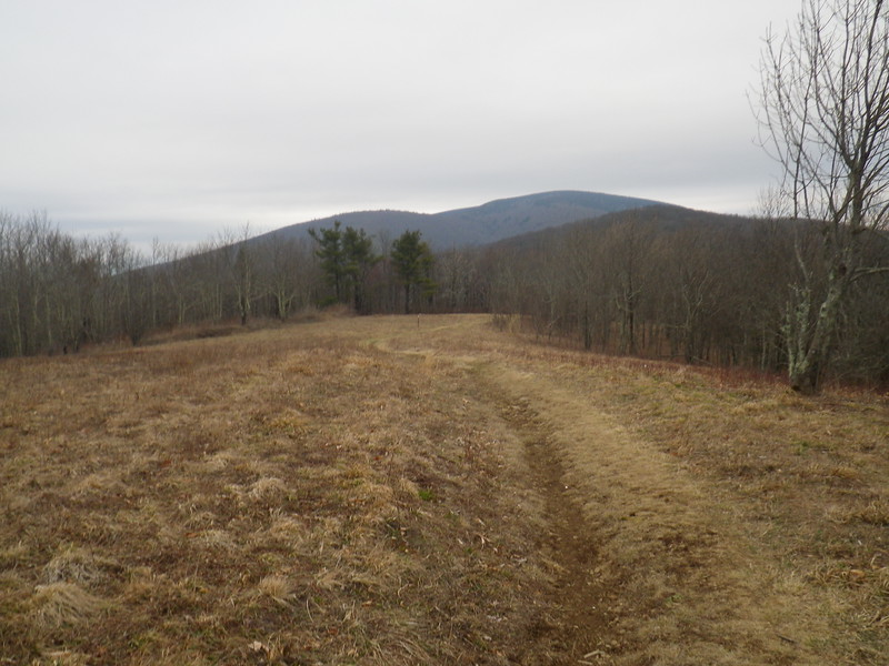 A look forth towards the upcoming 1000' ascent of Unaka (yew-NAY-kah) Mountain.