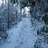 Only one northbound hiker passed through after Monday's snowstorm.  I broke trail heading southbound back to Hot Springs.