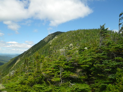 Mt. Webster - a short ascent from the end of the Webster Cliffs