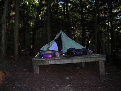 Tent pad at the Race Brook campsite