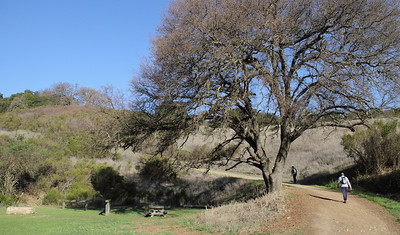 Almaden Quicksilver Hike