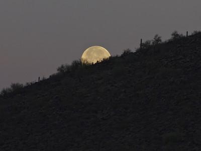 2013-05-25 Thunderbird Hedgepeth Hills