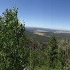 Kendrick Mountain Peak Coconino National Forest Flagstaff