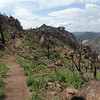 Granite Mountain Trail 261 Prescott National Forest Arizona