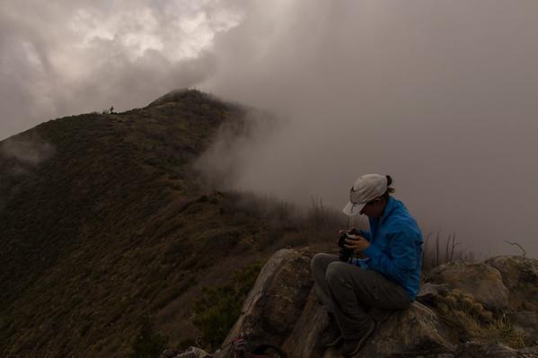 2016-04-09 Four Peaks Amethyst Trail