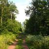 LP_Green_County5 8-19-10