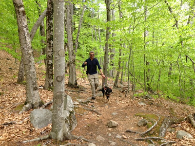 Autumn's First Hike - Agamenticus - May 2014