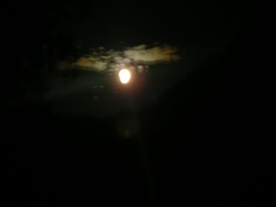 Almost a full moon ~ but my camera can't really pick it up.