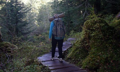 Susan heading down the trail ~ beautiful woods and plank walkways.