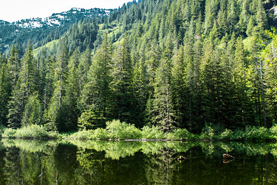 This hills on the upper left where blown out due to the sunlight.  I was able to recover them but they picked up a tint.  I am just too lazy to fix it.  The green trees reflected into the water what what I was liking.