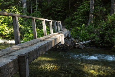 I love all the different types of bridges the Forrest service and volunteers put up on these hikes.