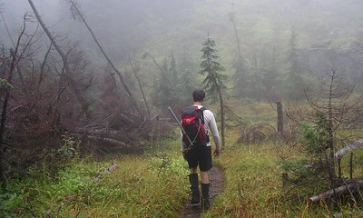 Hiking through avalanche path on the Three Fingers trail.