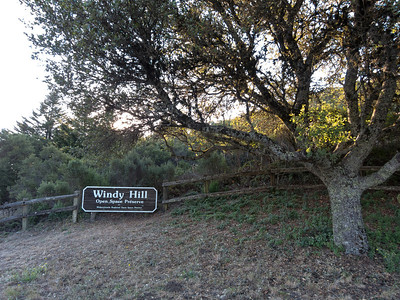 Windy Hill Open Space Preserve sign at the main entry on Skyline.