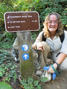 Our goal was to complete the stretch of the Bay Area Ridge Trail that runs along the Lost Trail below Skyline Road.