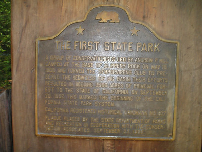 (This photo is FYI to get the text.) Big Basin Redwoods State Park was the first California State Park, founded in the early 1900s to protect the beauty of old-growth redwoods from logging.