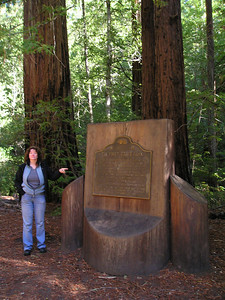 Linda points out the historical marker indicating that this spot was where a group of men came up with the idea of making Big Basin into California's first park to protect the redwood trees all around us.