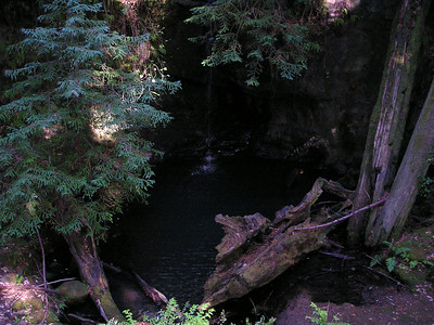 Sempervirens Falls is, at this time of year, a delicate stream of water falling into a broad, still pool below, nestled in the darkness of a redwood forest.